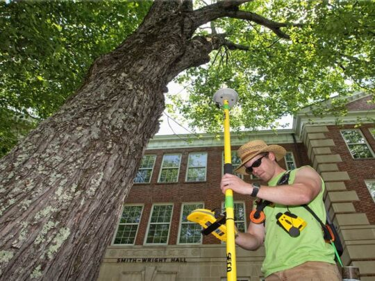 Arborist Consultations-Thonotosassa FL Tree Trimming and Stump Grinding Services-We Offer Tree Trimming Services, Tree Removal, Tree Pruning, Tree Cutting, Residential and Commercial Tree Trimming Services, Storm Damage, Emergency Tree Removal, Land Clearing, Tree Companies, Tree Care Service, Stump Grinding, and we're the Best Tree Trimming Company Near You Guaranteed!