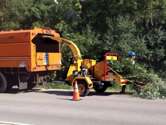 Commercial Tree Services-Thonotosassa FL Tree Trimming and Stump Grinding Services-We Offer Tree Trimming Services, Tree Removal, Tree Pruning, Tree Cutting, Residential and Commercial Tree Trimming Services, Storm Damage, Emergency Tree Removal, Land Clearing, Tree Companies, Tree Care Service, Stump Grinding, and we're the Best Tree Trimming Company Near You Guaranteed!