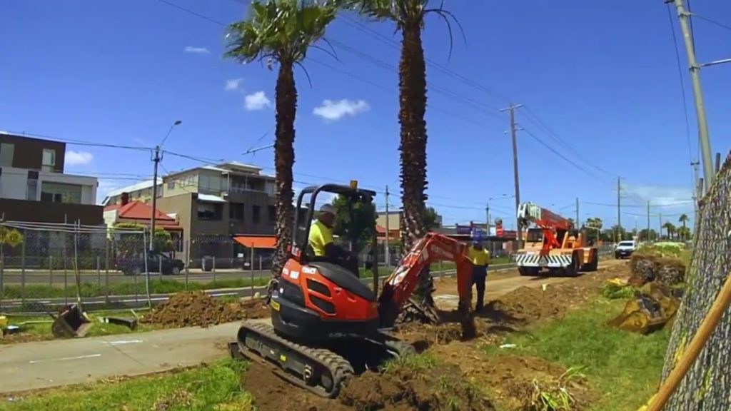 Palm Tree Removal-Thonotosassa FL Tree Trimming and Stump Grinding Services-We Offer Tree Trimming Services, Tree Removal, Tree Pruning, Tree Cutting, Residential and Commercial Tree Trimming Services, Storm Damage, Emergency Tree Removal, Land Clearing, Tree Companies, Tree Care Service, Stump Grinding, and we're the Best Tree Trimming Company Near You Guaranteed!
